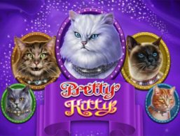 Microgaming – Pretty Kitty